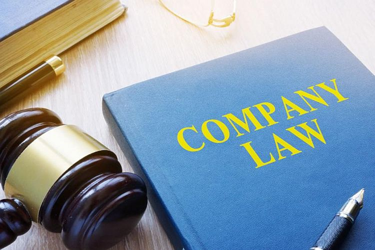Key Concept of the Company Law